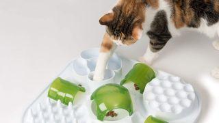 Cat puzzle feeder toy