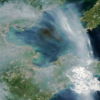 Smoke from Tianjin explosions, seen from space.
