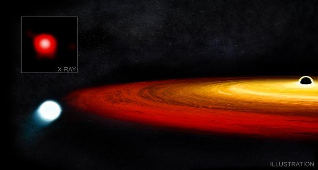 Black hole keeps snacking on white dwarf locked in its orbit