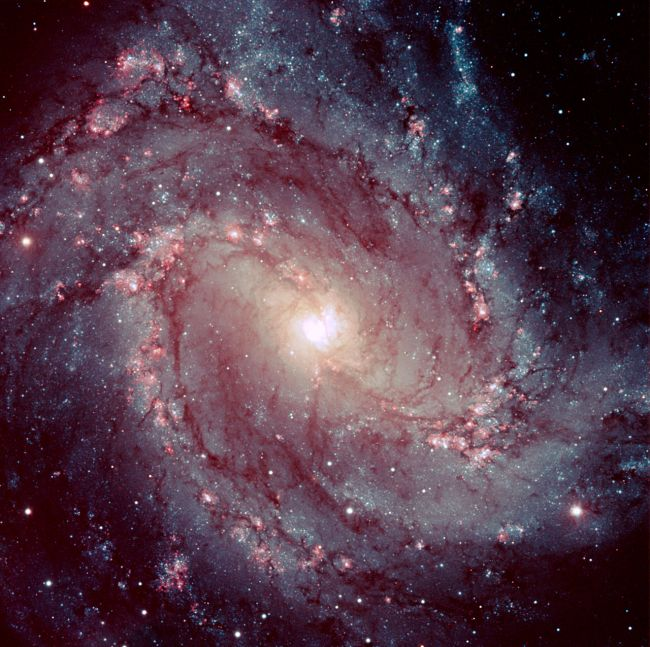 The Pinwheel galaxy, also called Messier-83.