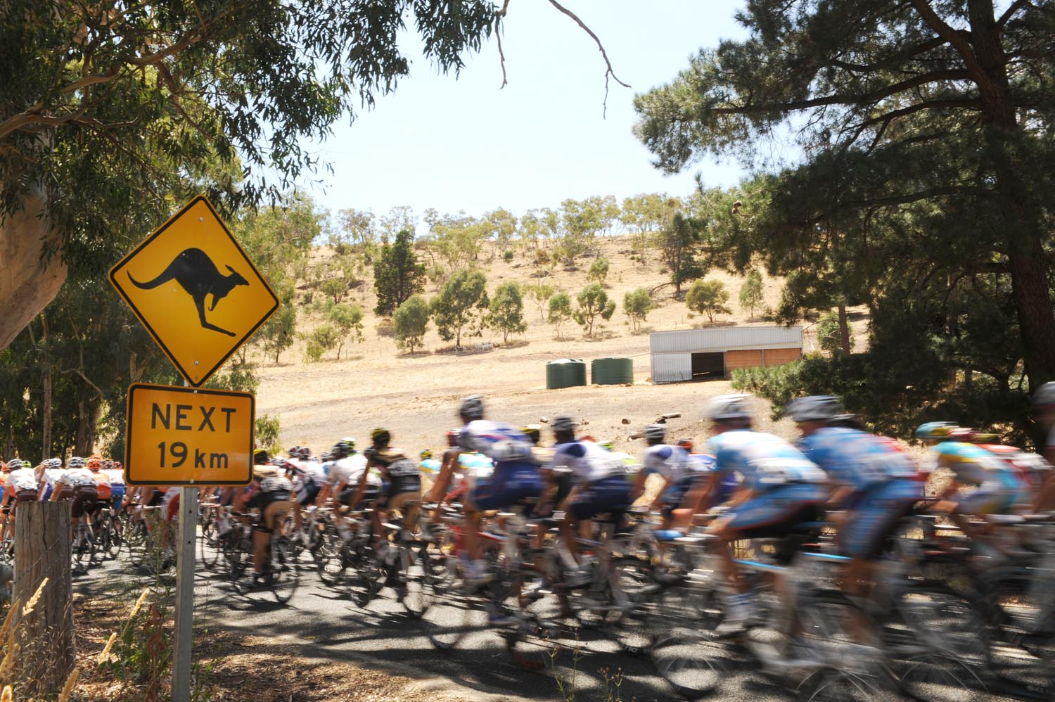 2010 tour down under, tdu, santos, andre greipel, lance armstrong, greg henderson, htc columbia, team sky, radioshack