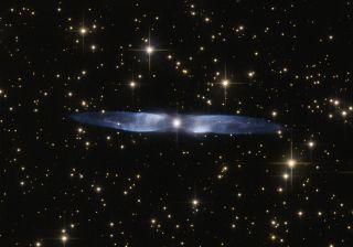 Nebula Hen 2-437