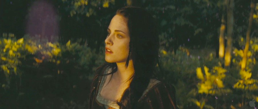 35 High-Res Screenshots From The Snow White And The Huntsman Trailer #5214