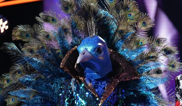 The Peacock The Masked Singer Fox