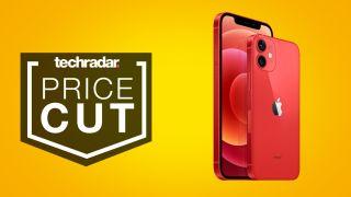 iPhone 12 Mini deals best buy