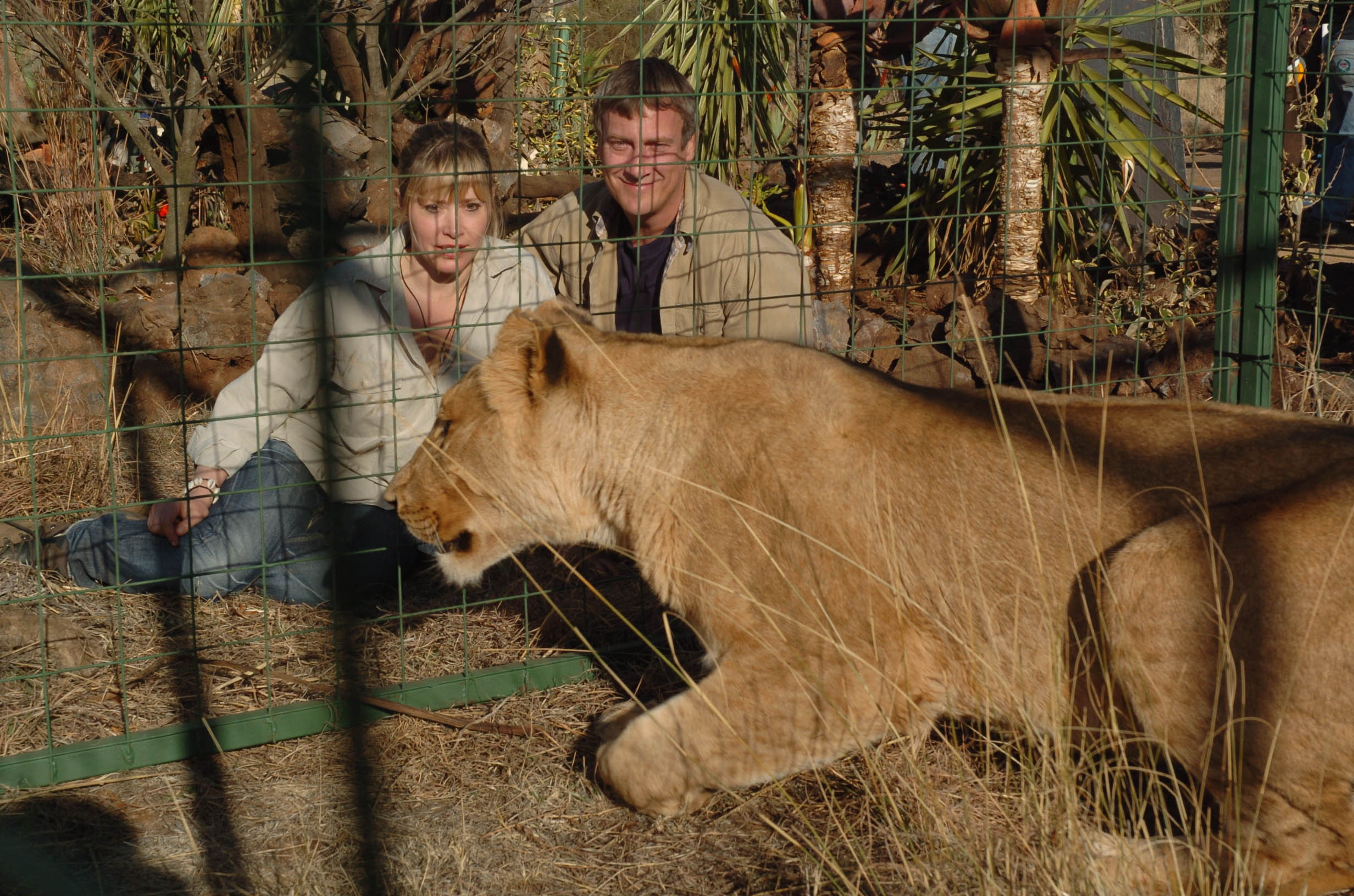 Wild at Heart set for series four | News | Wild At Heart
