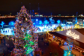 Powersoft Deva System Makes U.S. Debut at RiverRink