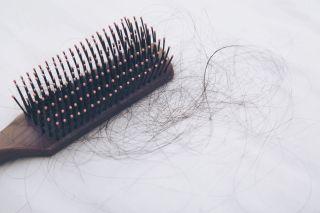A hair brush with a hair ball.