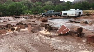 Flooding in Zion National Park