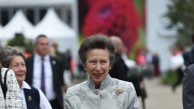 Princess Anne hailed by royal fans after accepting new RAF role—'she never disappoints'