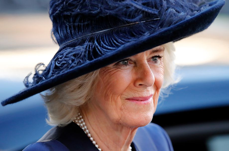 duchess camilla praised donation australia wildfires