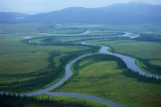 tributaries flowing into Bristol Bay