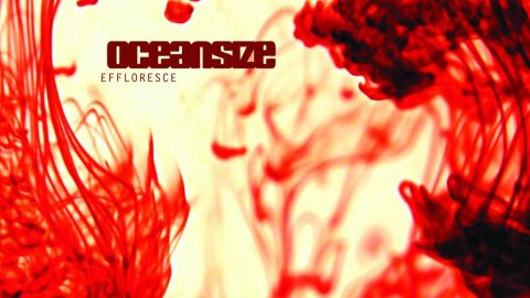 Oceansize - Effloresce album artwork