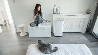 How do air purifiers work? Image of woman sitting next to air purifier with cat