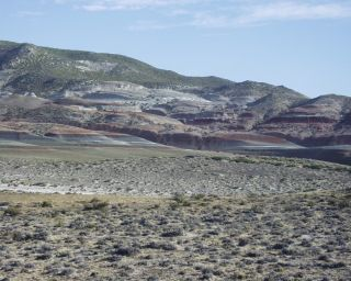 the Punta Peligro fossil locality, Chubut Province, Patagonia.