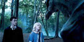 Harry Potter's Evanna Lynch Shares One Half-Blood Prince Scene She's 'Really Sad' Didn't Make It Into The Film