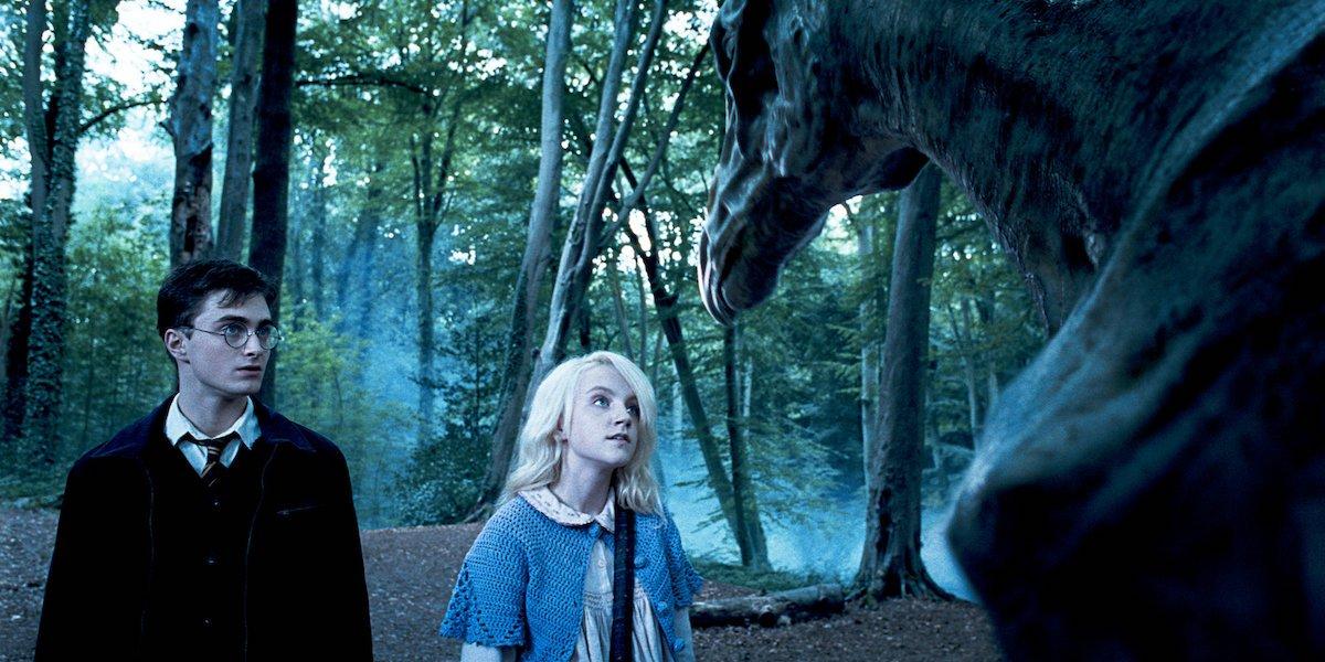 Harry Potter and Luna Lovegood