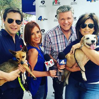 KXAS-KXTX Clear the Shelters