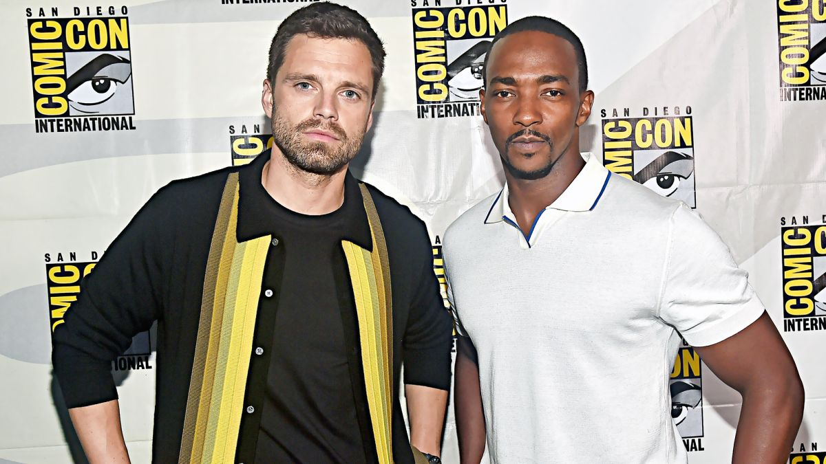 The Falcon and The Winter Soldier: Release Date, Cast and Plot