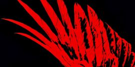 One Major Change Red Rising Fans Should Expect From Pierce Brown's Iron Gold Trilogy