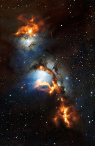 This image of the region surrounding the reflection nebula Messier 78, just to the north of Orion's belt, shows clouds of cosmic dust threaded through the nebula like a string of pearls.