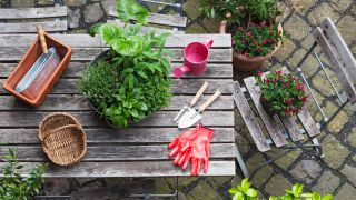 Sustainable gardening: image of garden tools and plants