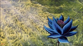 An image of the Black Lotus card art from Magic: The Gathering