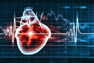 An image shows a human heart with a cardiogram