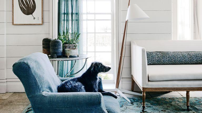 Farmhouse curtain ideas with blue sofa and curtain