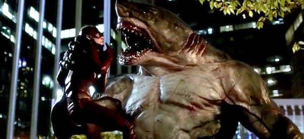 the flash king shark