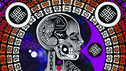 Lacertilia, 'We're Inside Your Mind' album cover