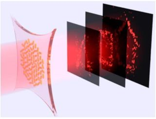 Researchers have developed holograms made of stretchy materials that could enable holographic animation.