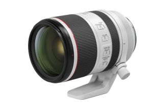 Canon RF 70-200mm f/2.8L IS USM. Credit: Canon