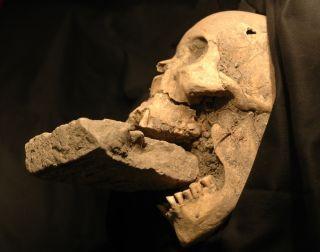 """A purported """"vampire"""" found in Venice"""