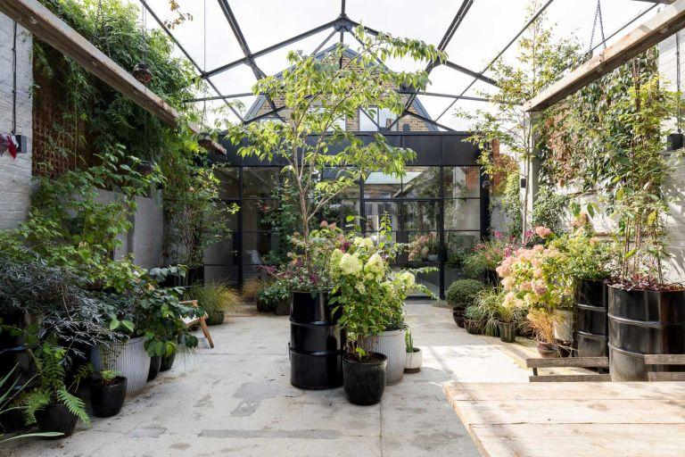 Imperfect Interiors design project - courtyard garden
