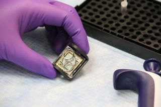 diagnostic chip can quickly determine best medicine