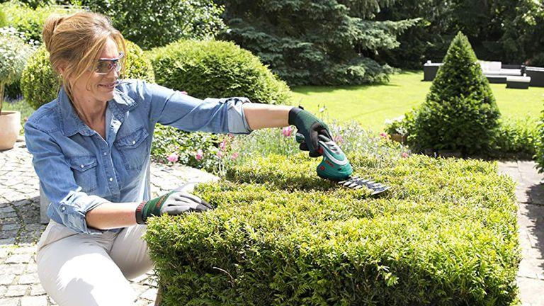 Amazon summer sale: Bosch hedge trimmer