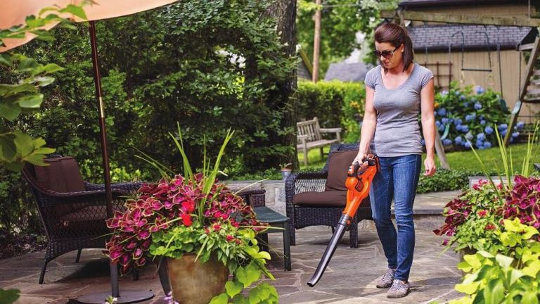 BLACK+DECKER 20V MAX Cordless Sweeper with Power Boost