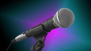 Best XLR microphone: Shure SM58