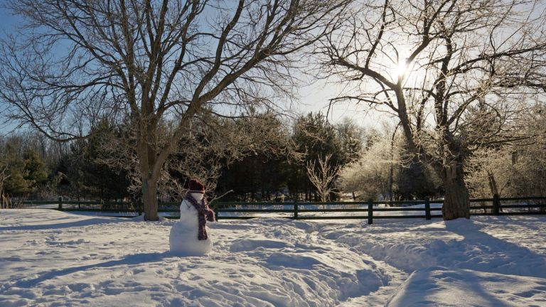 White Christmas? Wide angle view of freezing cold winter morning with snowman
