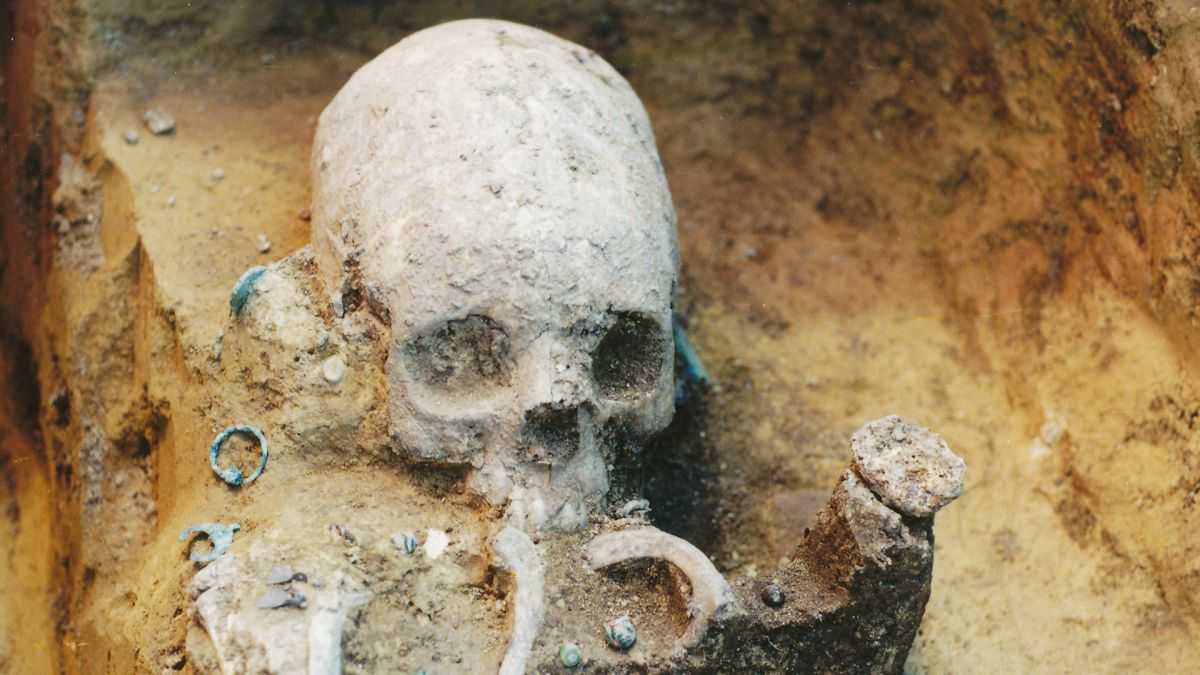 Deformed 'alien' skulls offer clues about life during the Roman Empire's collapse