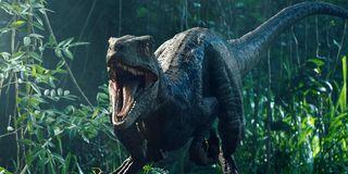Blue in Jurassic World: Fallen Kingdom