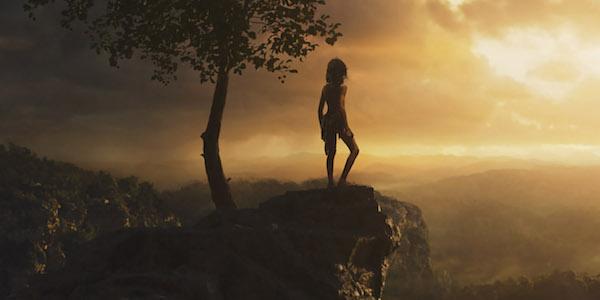 Mowgli at sunrise