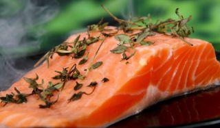 salmon-101105-02