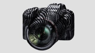 Canon EOS R5 has zebras, can turn 8K into uber-4K
