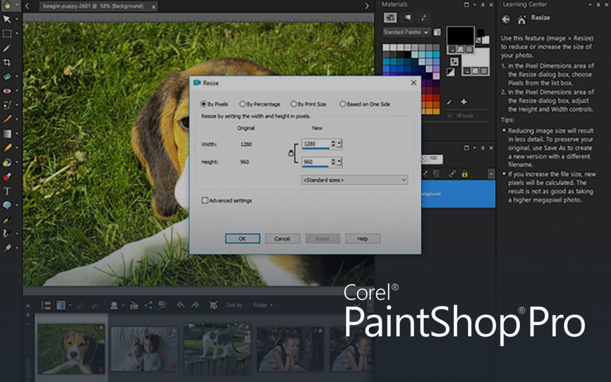 Best Photo Organizing Software of 2019 - Sort and Tag Photos