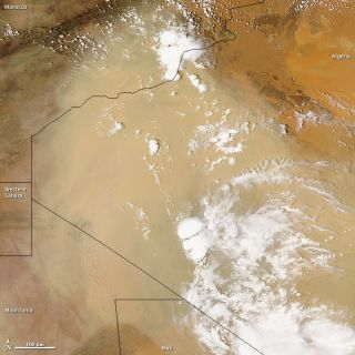 A sand storm blows over the Sahara Desert in this NASA satellite image