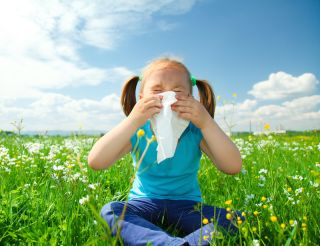 A little girl blows her nose.