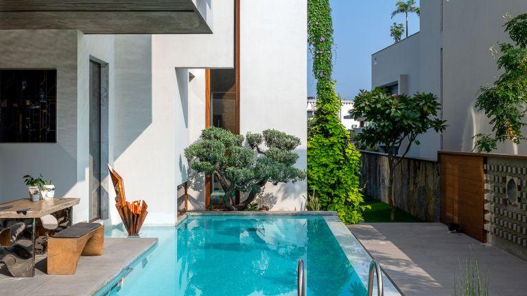 Small backyard with small narrow swimming pool