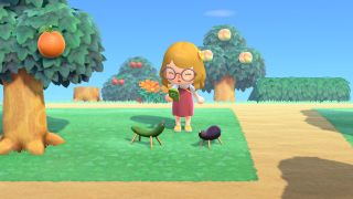 Animal Crossing: New Horizons Obon items